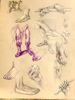 Study of hands and feet, 2016